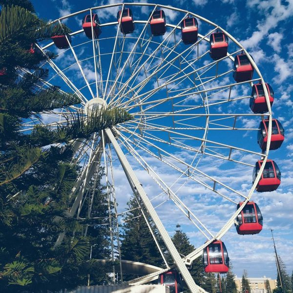 What to do in Fremantle